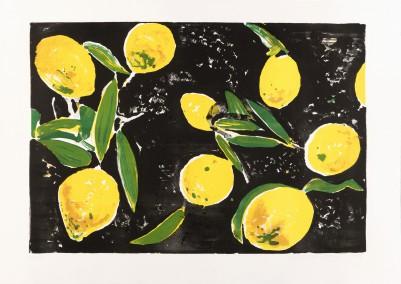 Stangl, Reinhard, 8 Zitronen
